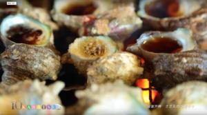 サザエの壺焼き撮影